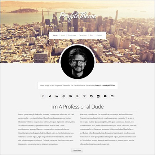 Profile WordPress Theme