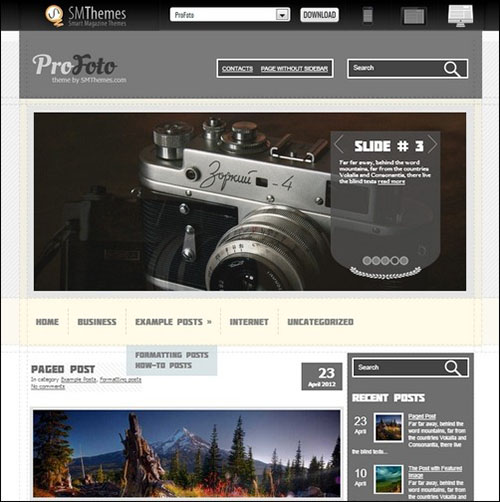 profoto wp theme