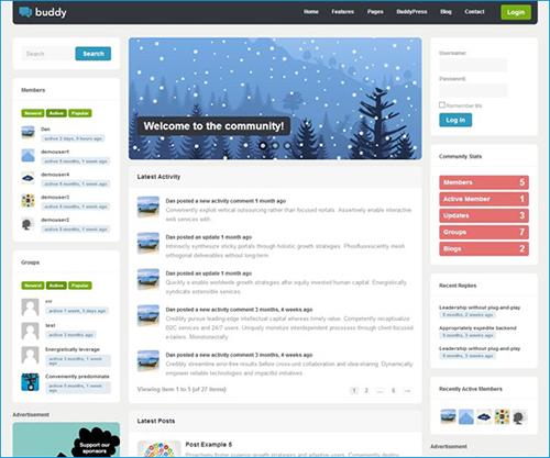 Buddy---Multi-purpose-WordPress-and-BuddyPress-Theme