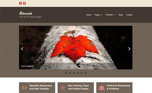 Brownie Business Portfolio Template