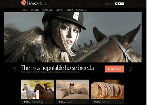 Free Horse Club HTML5 CSS3 Template