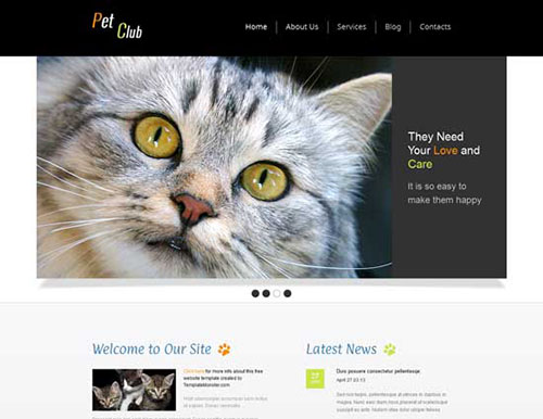 free html5 css3 templates Animals Pet Club