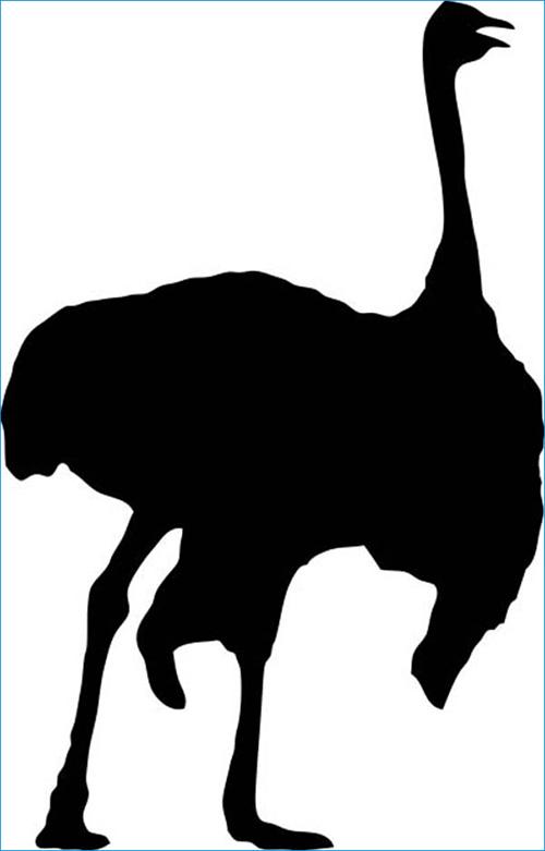 free-animal-vectors-26