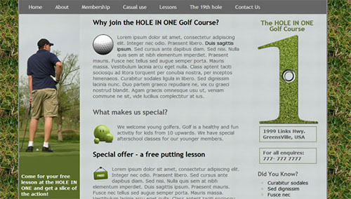 TheHoleInOne HTML5 and CSS3 Template