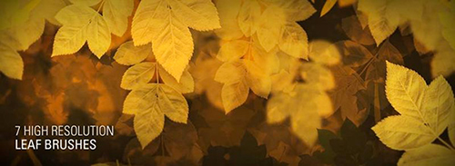leaf_free_Photoshop_brushes